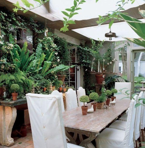 Pflanzen Im Wintergarten Pflegetips Massiver Esstisch