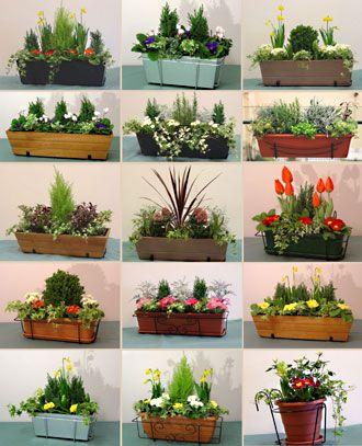 images window boxes | Window Boxes Box, Buy Cheap Online - Super Garden Centre