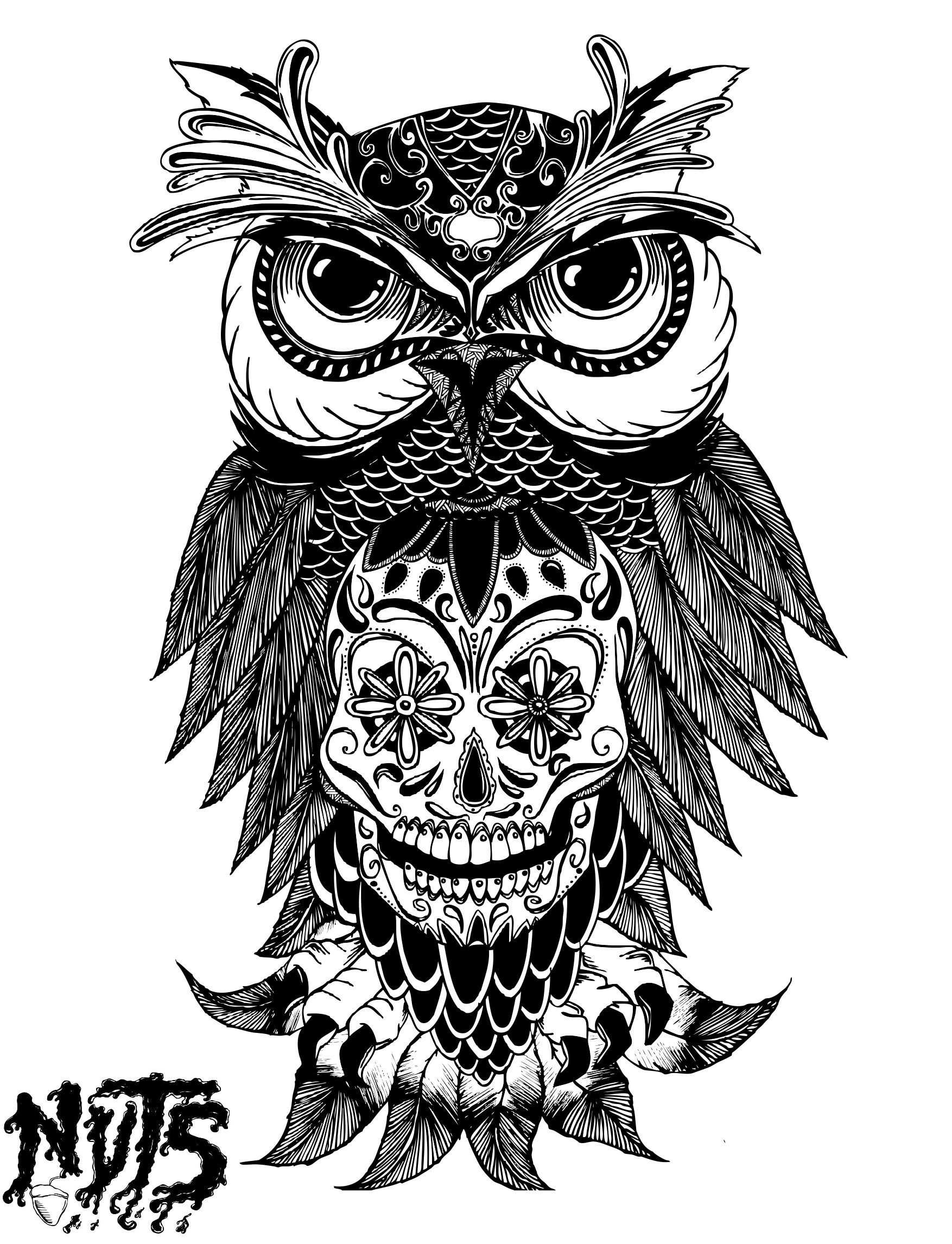NUTS OWL MEXICAN SKULL | NUTS creation | Pinterest ... - photo#11
