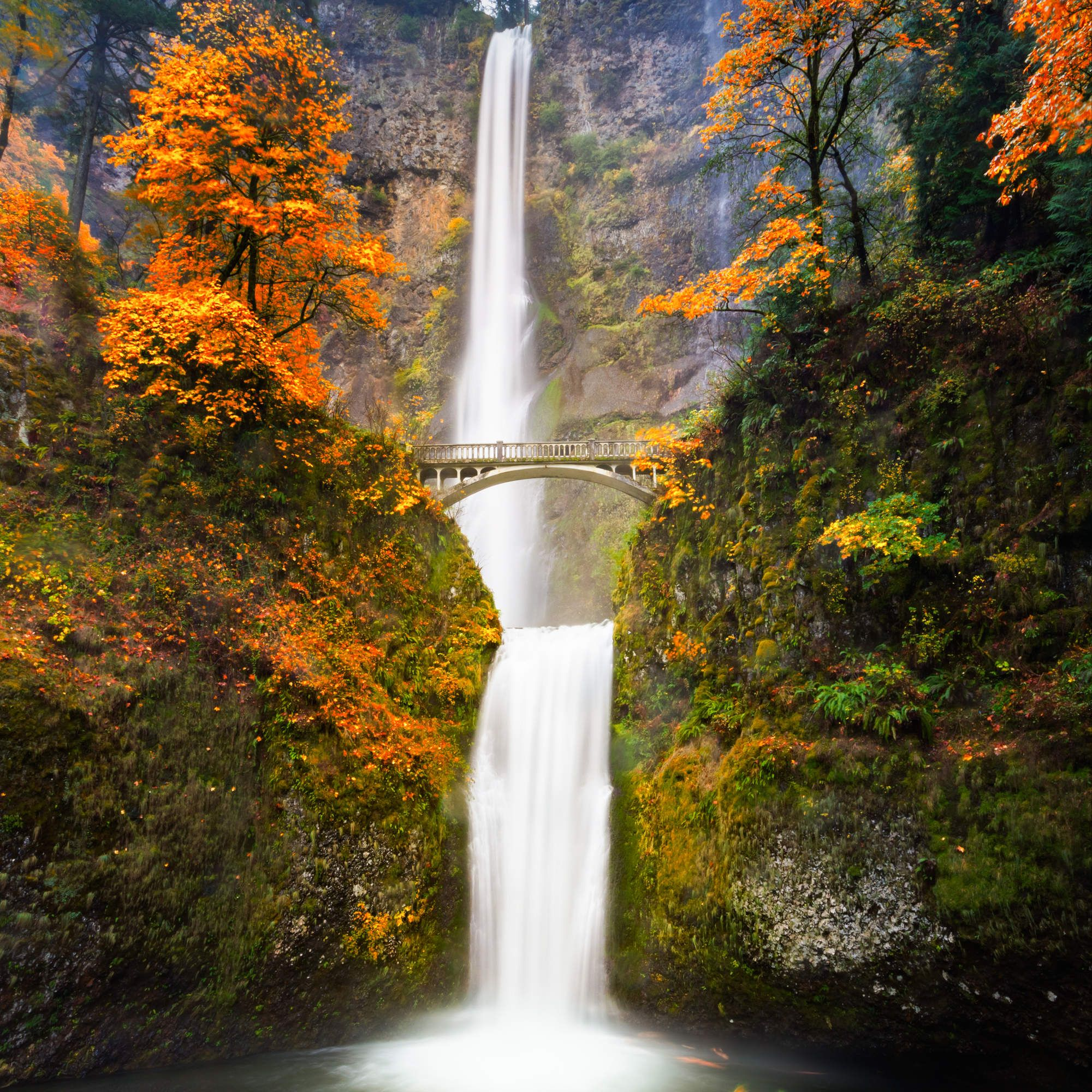Beautiful Places In Portland Oregon: America's Best Places To See Fall Colors (That Aren't In