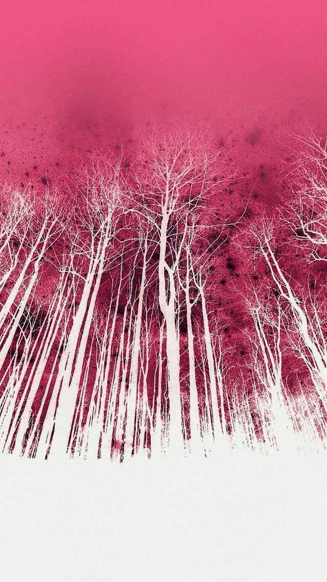White trees & red sky art