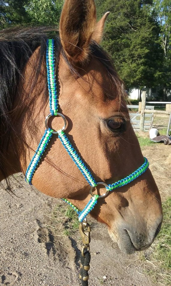 NEW HORSE TACK! BLUE Premium Nylon One Ear Western PONY Size Headstall