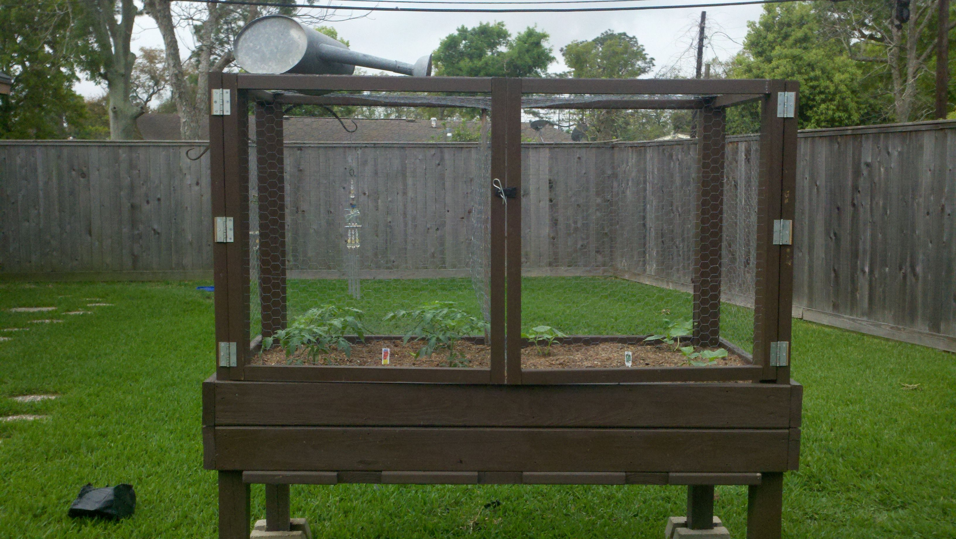 Image Result For Waist High Vegetable Garden Beds