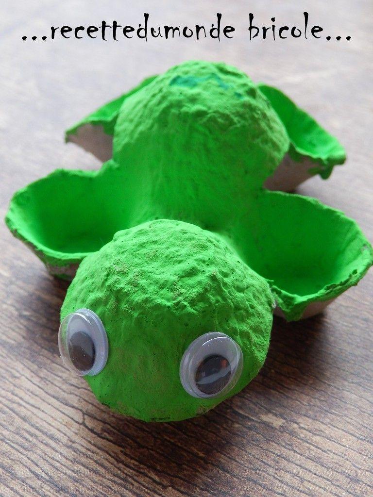 Coucou les zamies avec se temps on sort vite fait au for Avoir une tortue a la maison