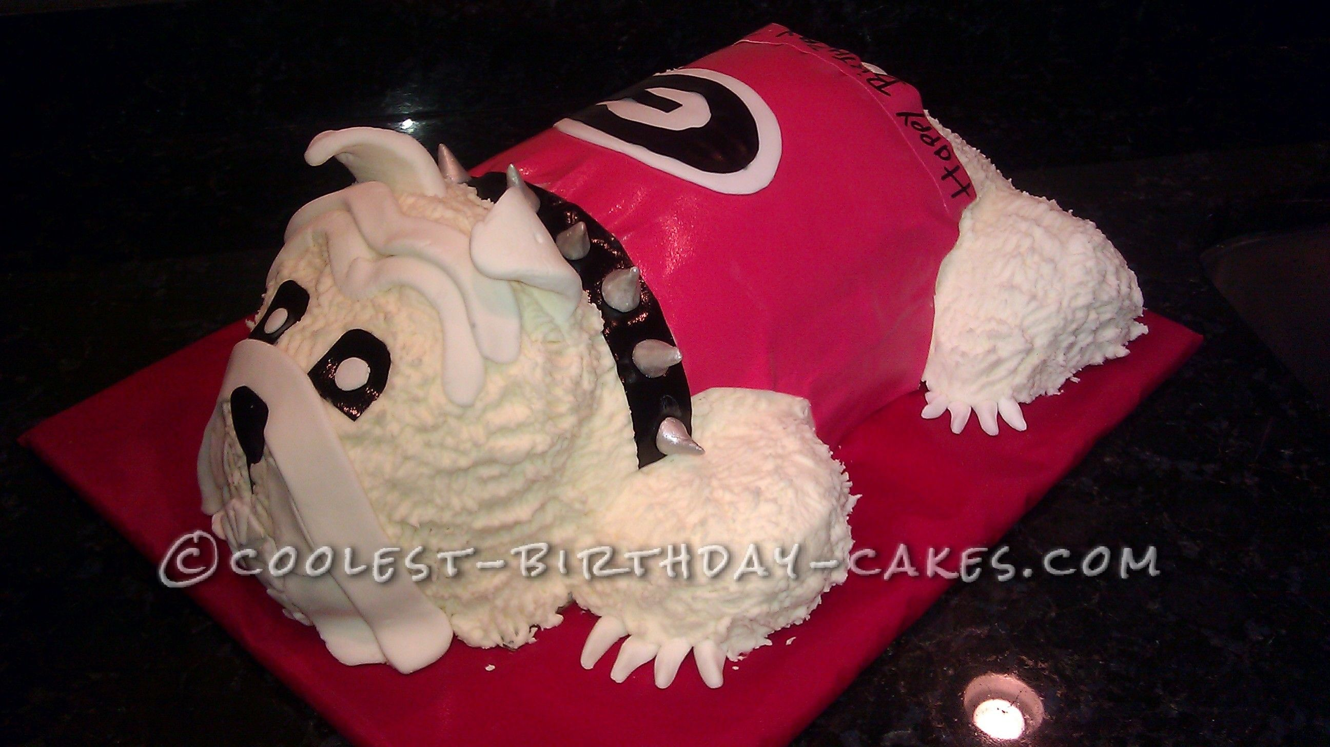 Coolest UGA Mascot Dog Cake... This website is the Pinterest of birthday cake ideas