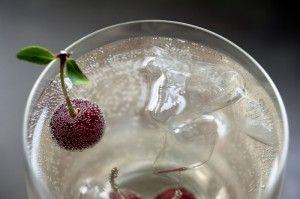 Sour cherry spritzer BiteSizeWellness.com
