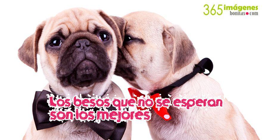 Los Mejores Besos Son Los Que No Se Esperan
