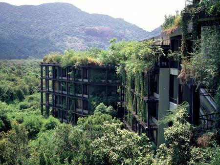 Kandalama hotel sigiriya cultural triangle sri lanka for Kandalama hotel sri lanka