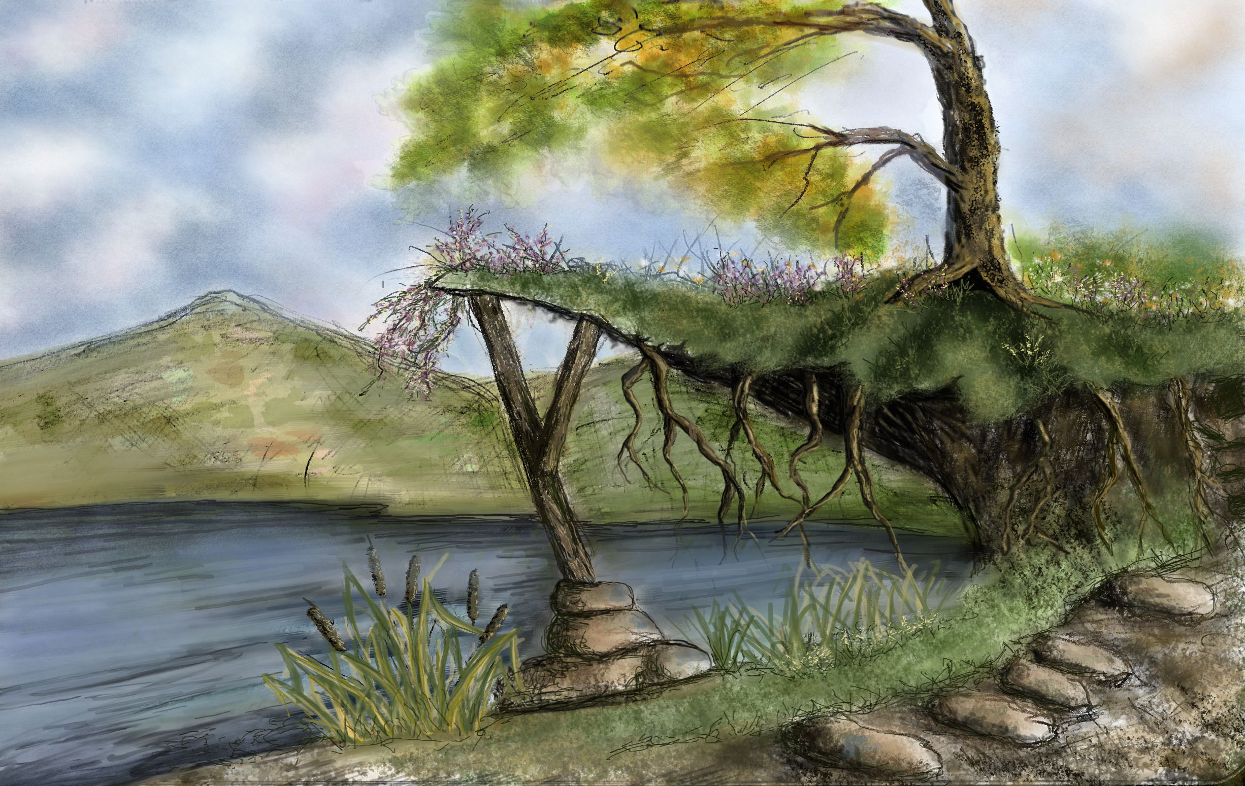 drawing, color, pond, roots, tree | My Art | Pinterest | Drawings