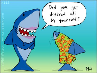 Clothes Optional Funny Animal Jokes Cute Shark Scuba Diving Quotes