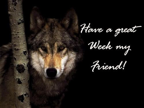 Image result for happy new week my friend pix