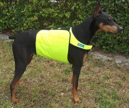 Dog Cooling Vest Dog Cooling Jacket And Coat Cooling Coats For