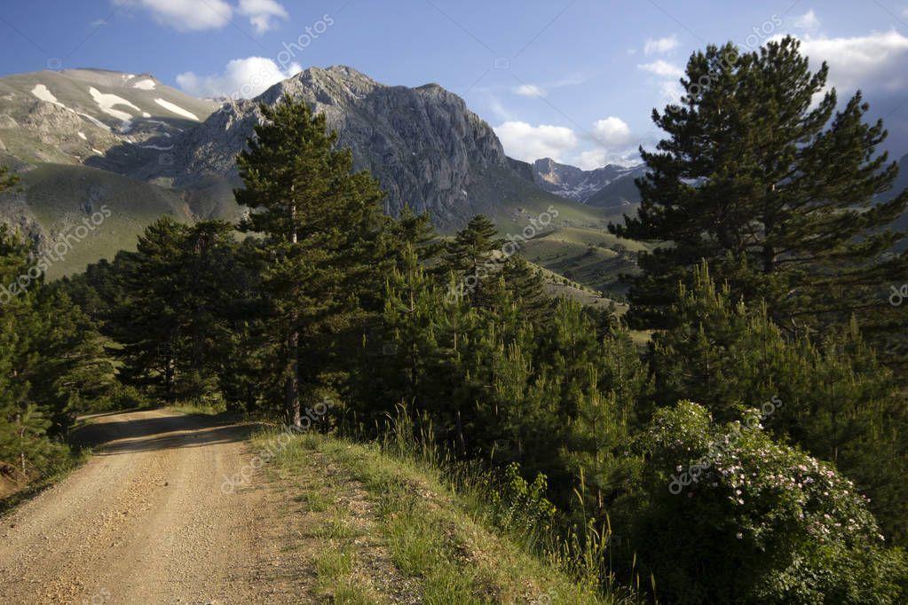 Beautiful Mountain Landscape Background Image Stock Photo Sponsored Landscape Mountain Bea Landscape Background Background Images Mountain Landscape