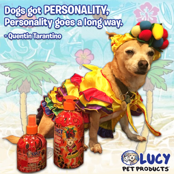 Does Your Dog Have Personality We Know Ours Do Especially Lucy Pets Pet Health Dogs