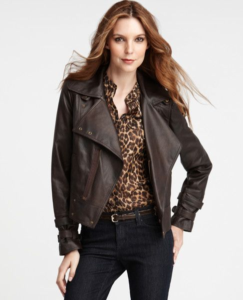 Ann Taylor Modern Motocycle Jacket This Has Become My Essential Jacket For Fall Winter I Wear It Almost Daily Jackets Brown Leather Jacket Biker Chic