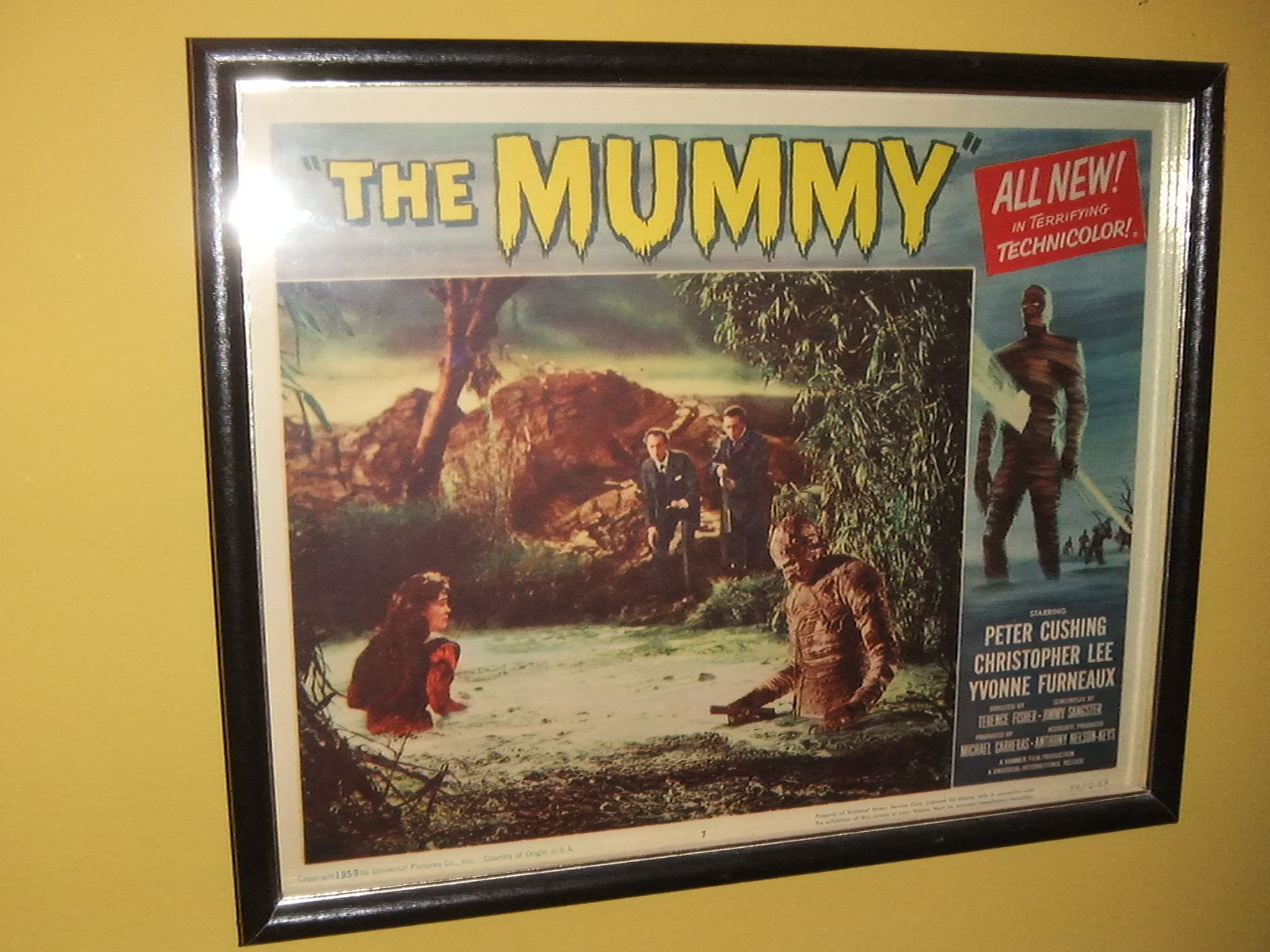 Hammer Films' THE MUMMY lobby card.