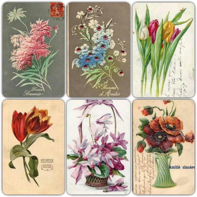 Vintage flower cards