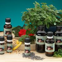 Starwest Botanicals: bulk organic herbs and spices | Herbology