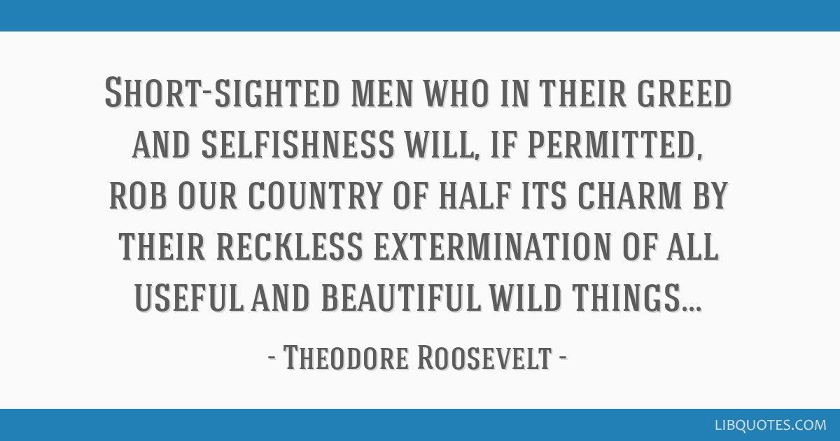 Roosevelt Quote On Greed And Selfishness In 2020 Quotes Picture Quotes Funny Quotes