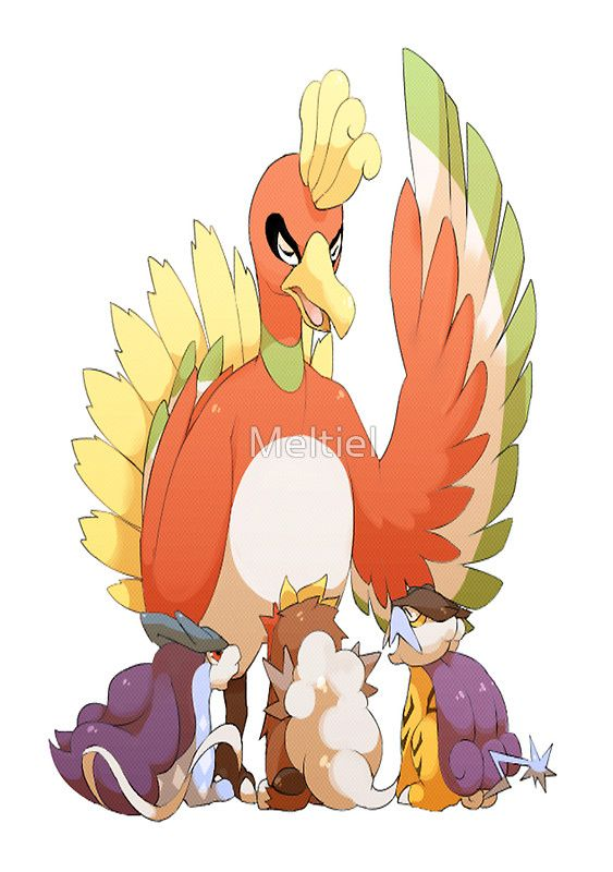Ho-Oh, Suicune, Entei, and Raikou Postcard | We just got a ...