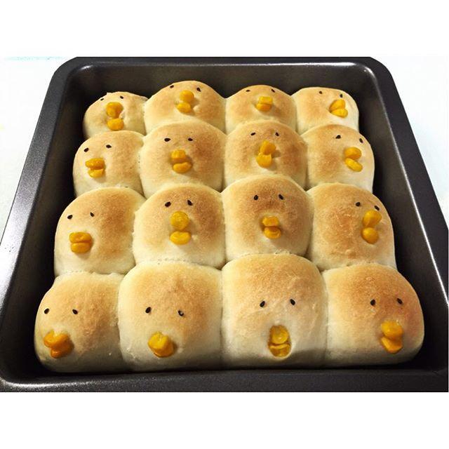 : 友達からの呼び出し : パンが焼けたから持って帰って〜!! て可愛すぎる♡♡ : #ちぎりぱん #ちぎりパン #パン #bread #鳥 #bird #焼き立て #cooking #food #かわいい #料理 #私は食べるだけ #ひよこパン #コーンパン #corn #sesame