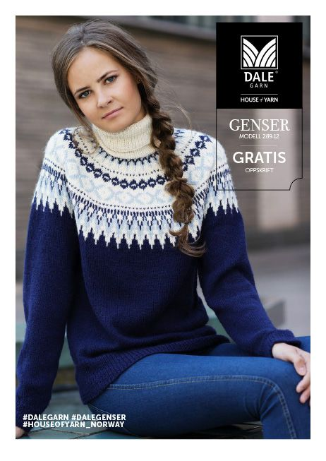 DG289 12 Genser med hals | Dale Garn