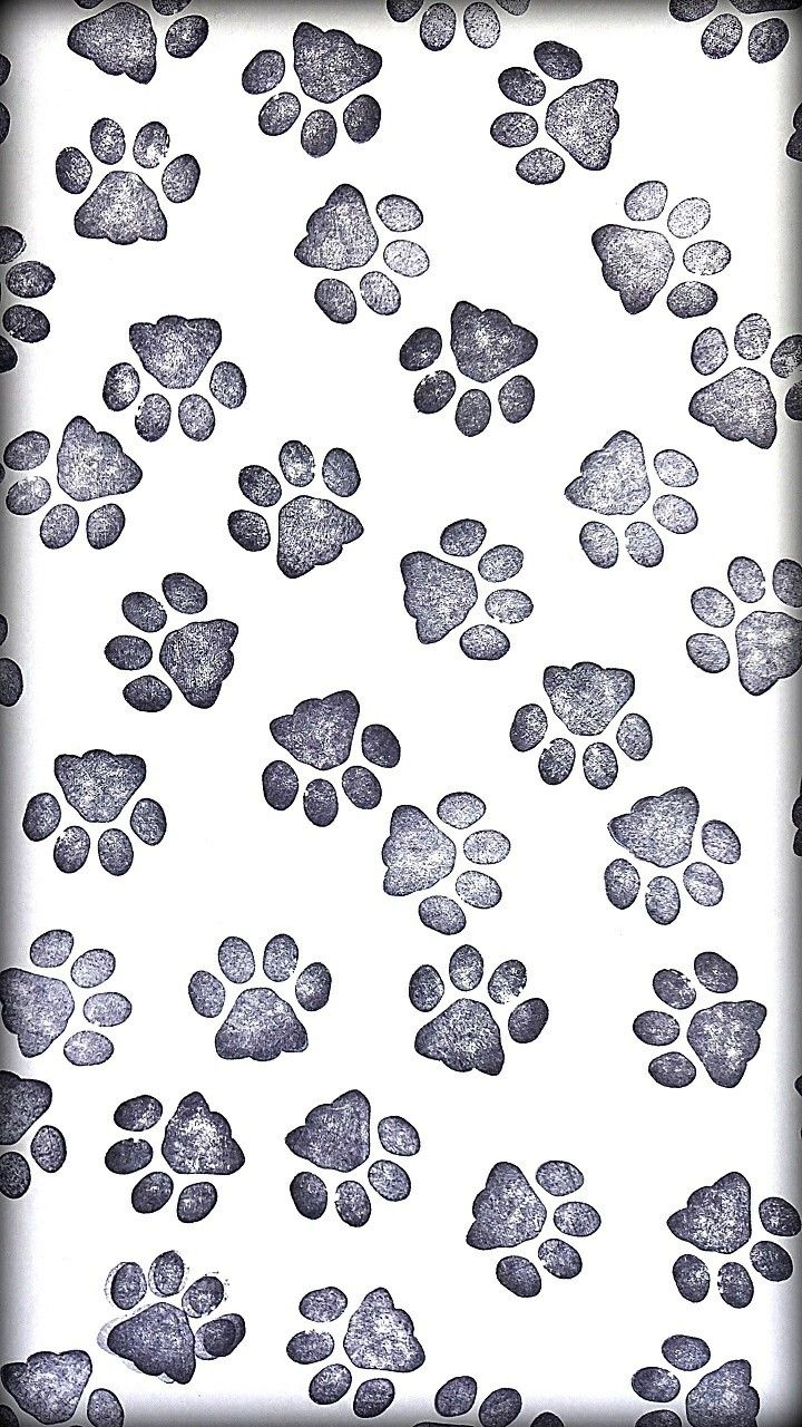 Pin By Mutya Chua On Wallpaper Paw Wallpaper Pastel Background Wallpapers Dog Wallpaper