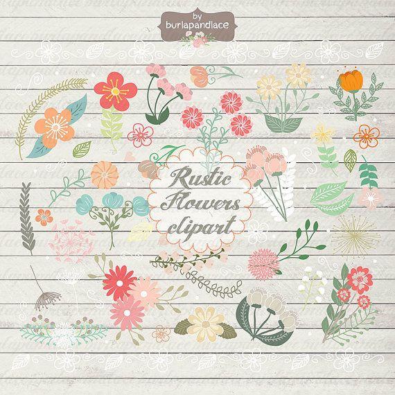 Rustic Wedding Floral Clip Art Hand Illustrated Digital Flowers PNG Flower