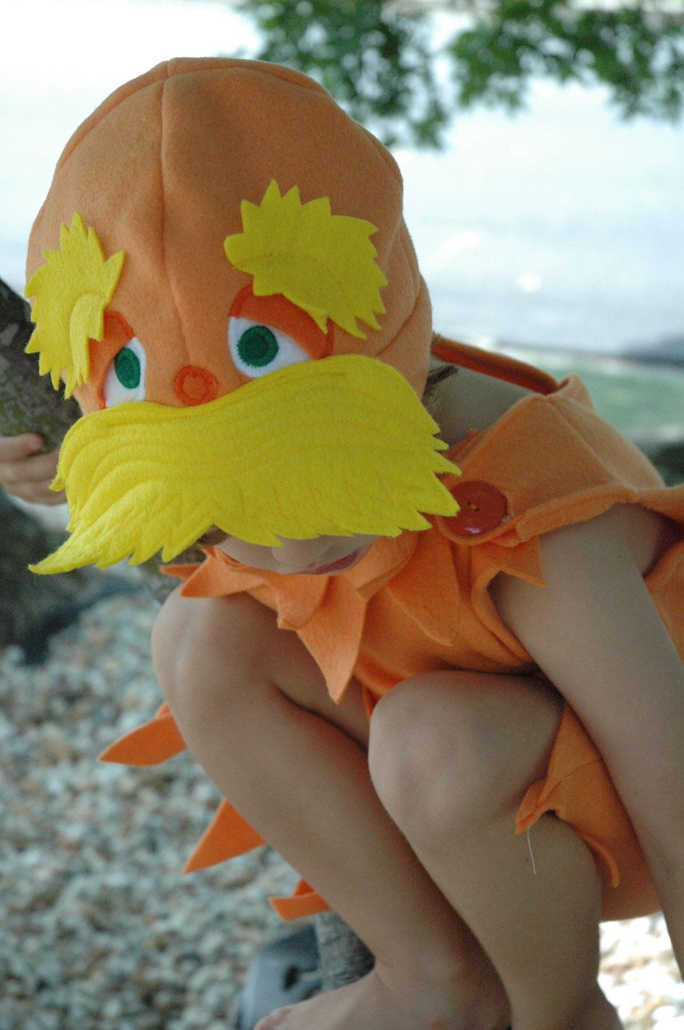 Lorax Inspired Costume Giftset - Includes Hat and Body Suit - Dr Seuss Lorax Costume - Halloween Costume - Kid Costume. $85.00, via Etsy. #provestra