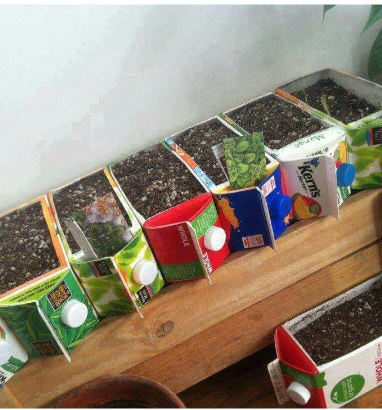 DIY Seedlings. Recycle Juice Containers As Seedling