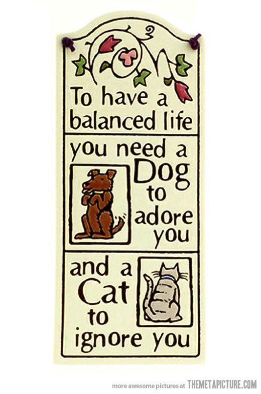 Balanced Life Find The Balance Pinterest Balanced Life Unique Balanced Life Quotes