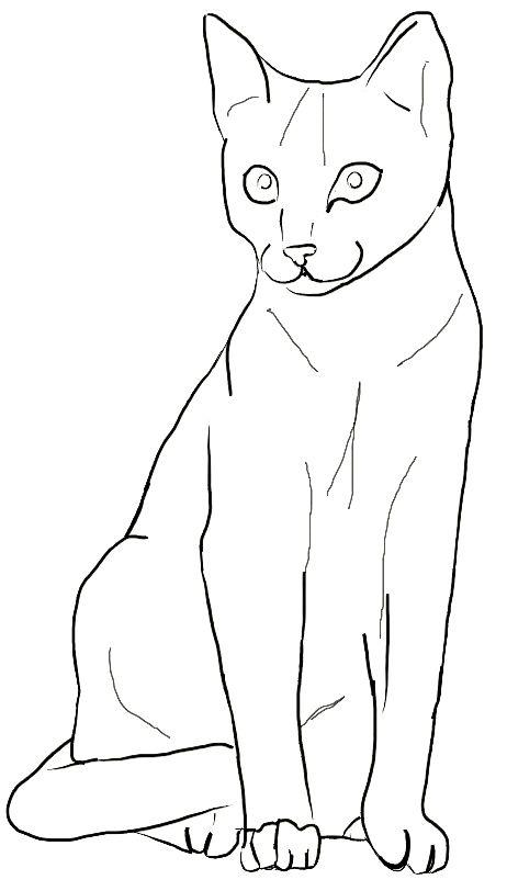 18 Schoene Ausmalbilder Katze Dekoking Com Ausmalbilder Katzen Katze Zum Ausmalen Ausmalbilder