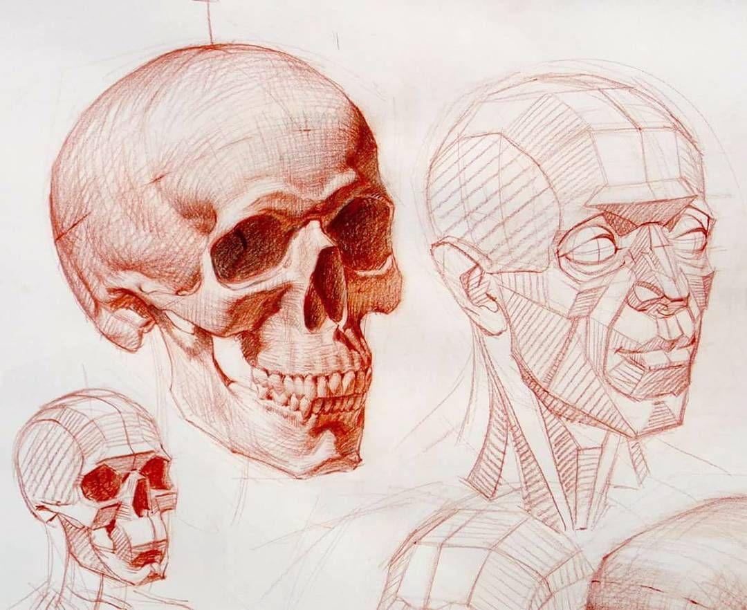 3 791 Curtidas 37 Comentarios Ramon Alexander Hurtado Ramon Alex Hurtado No Instagram Hey Y All So I M Go Anatomy Sketches Anatomy Drawing Anatomy Art
