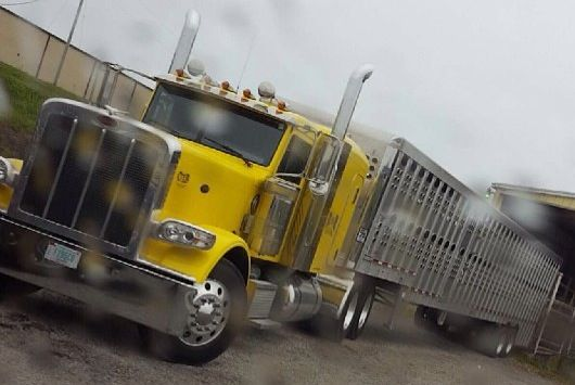 Ground load | Baby Bull Haulers | Big trucks, Trucks, Lifted