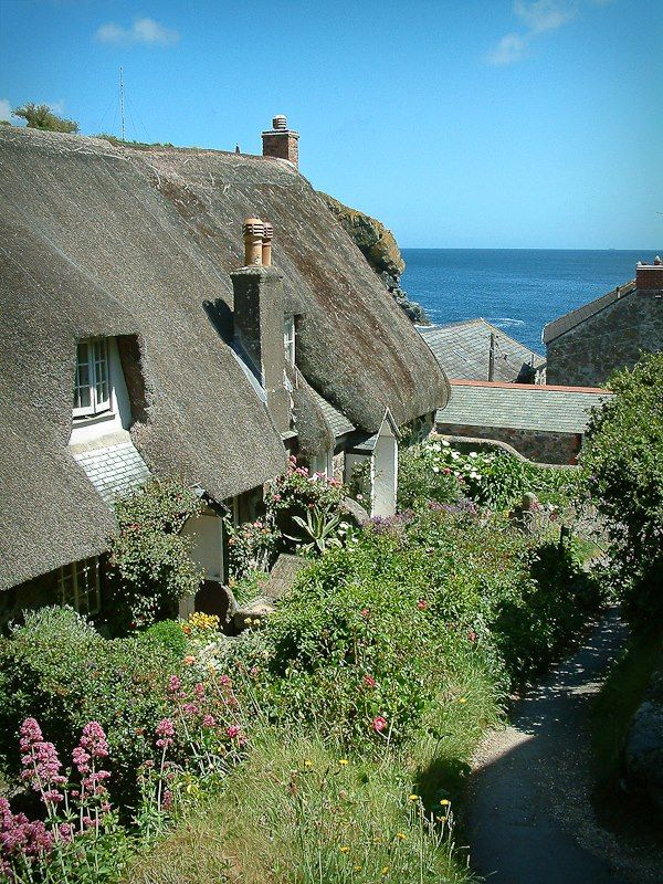 These beautiful cottages are next to the footpath as you walk down into the delightful Cadgwith Cove, Cornwall.