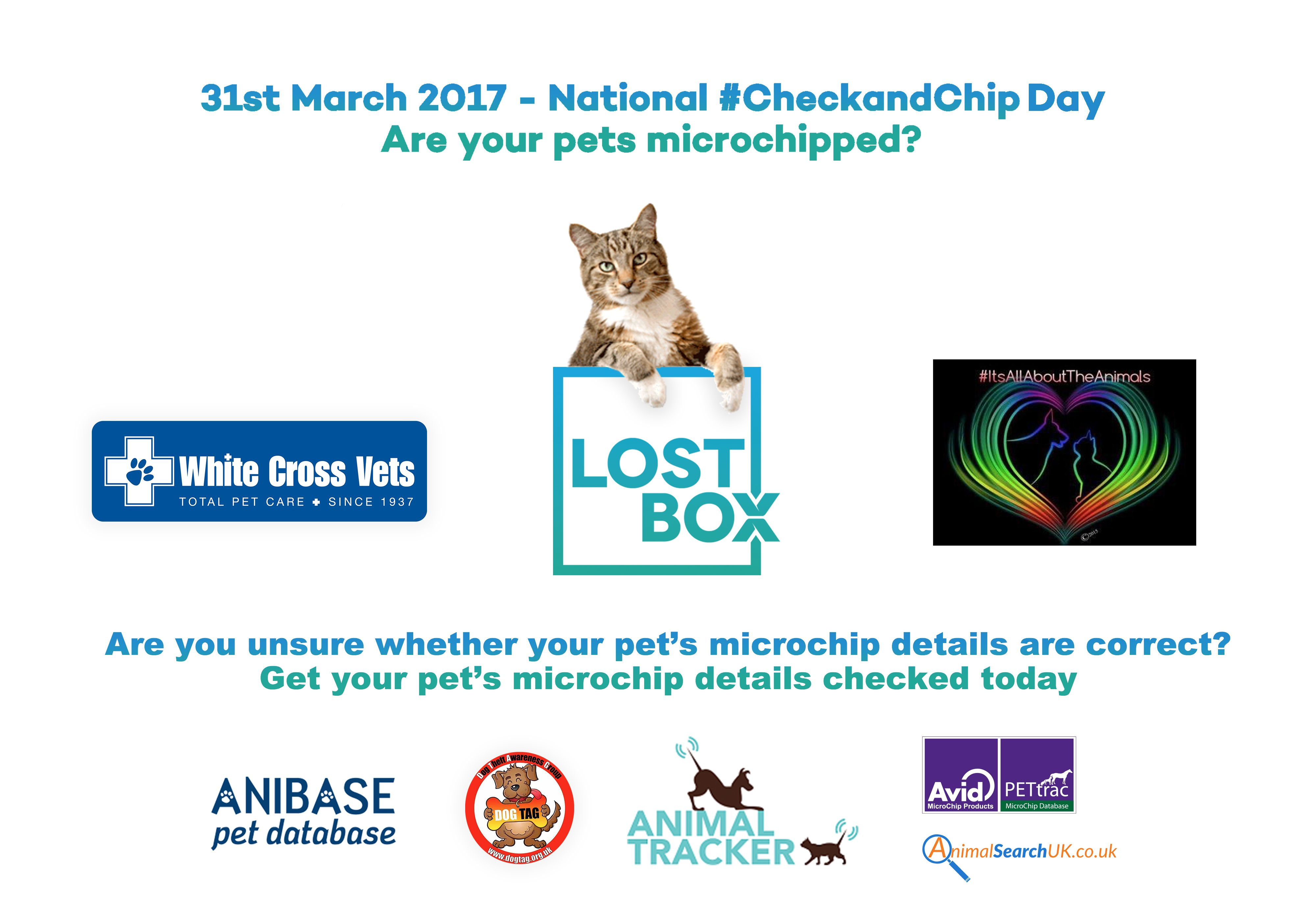 Is Your Cat Microchipped Are The Details Up To Date Cats Love To