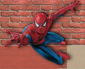 Spiderman Bedroom Decorating Ideas   Bring Life To Your Walls With Spiderman.  Decorate A Spider