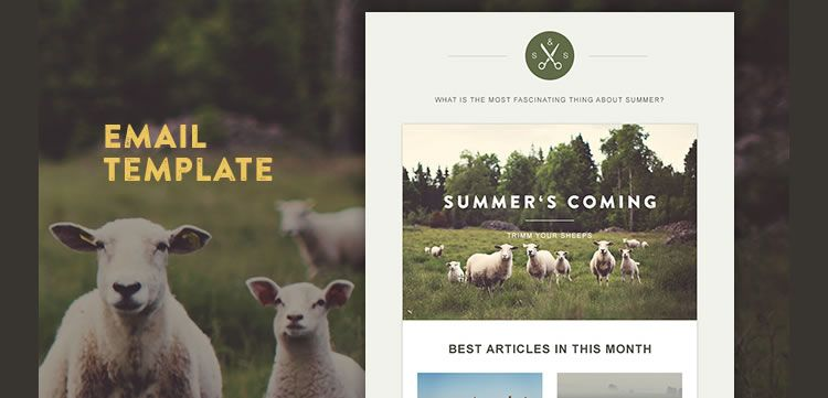 30 Free Responsive Email and Newsletter Templates Responsive email
