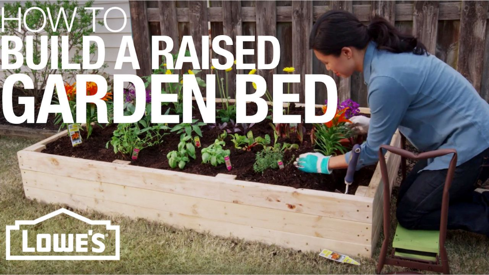 How to Build a Raised Garden Bed Raised garden, Diy