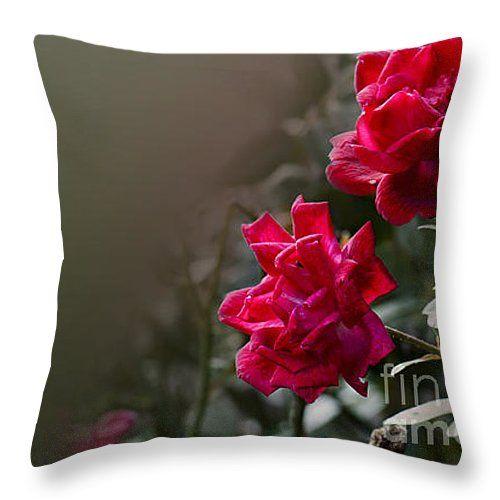 """Roses Throw Pillow 14"""" x 14"""""""