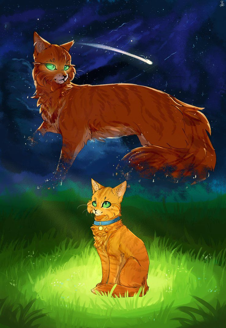 Warriors Official Artwork With Images Warrior Cats Warrior