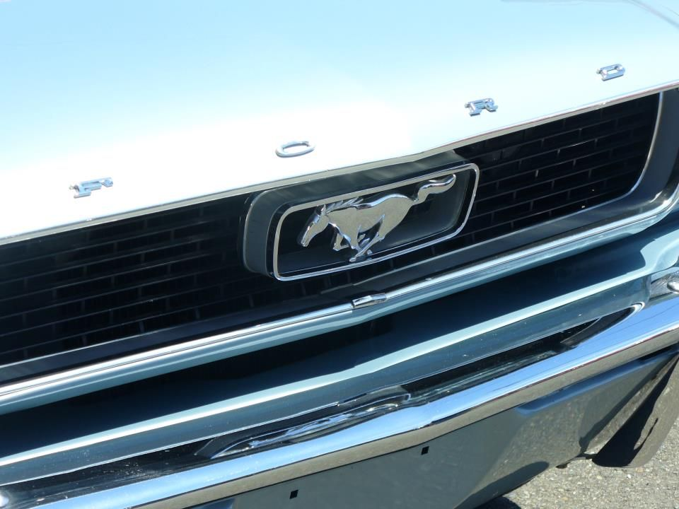 Mustang Close Up Front Grill (found while cruising the internet for awesome…