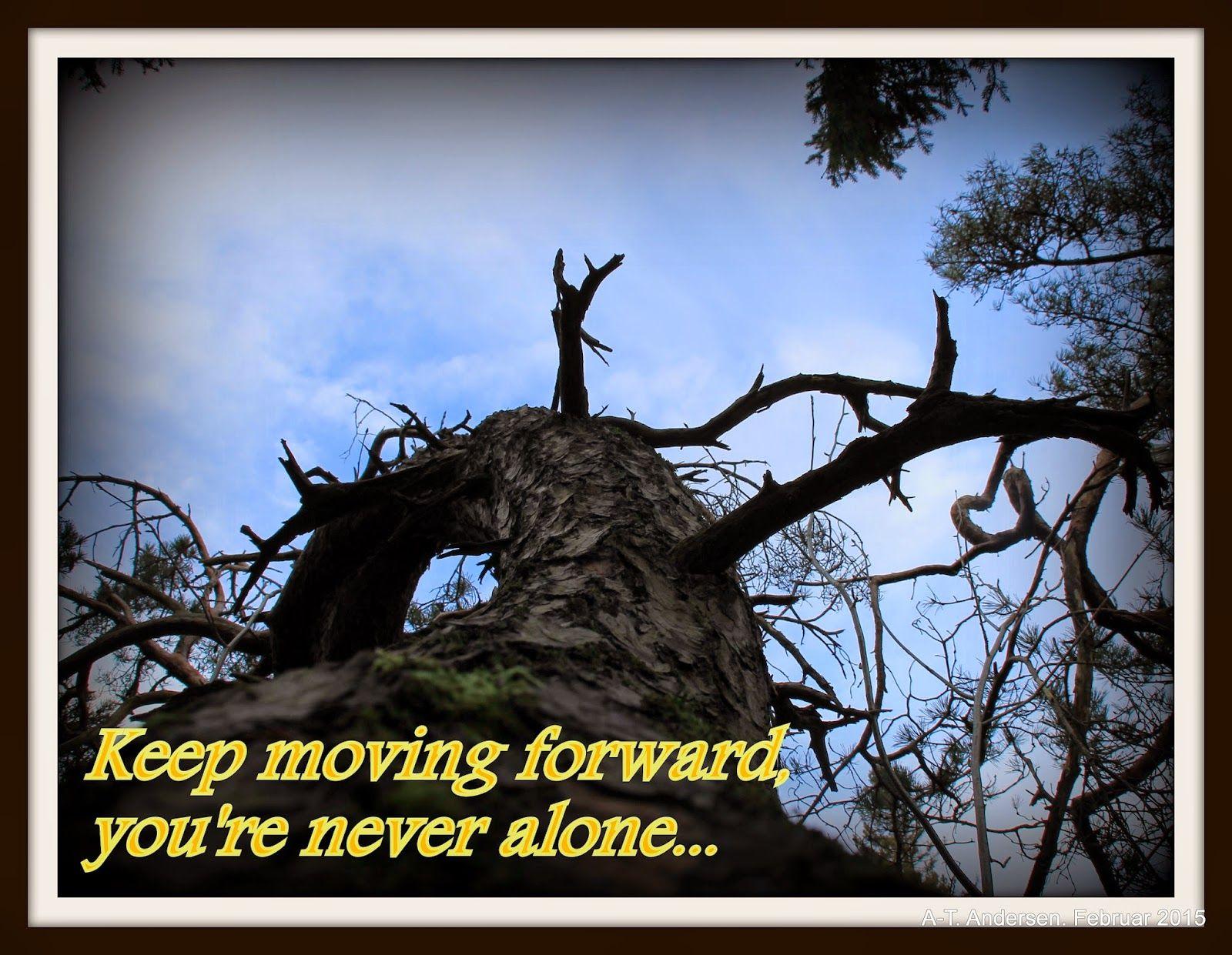 "Naturen i bilder: ""Keep moving"" uke 9"