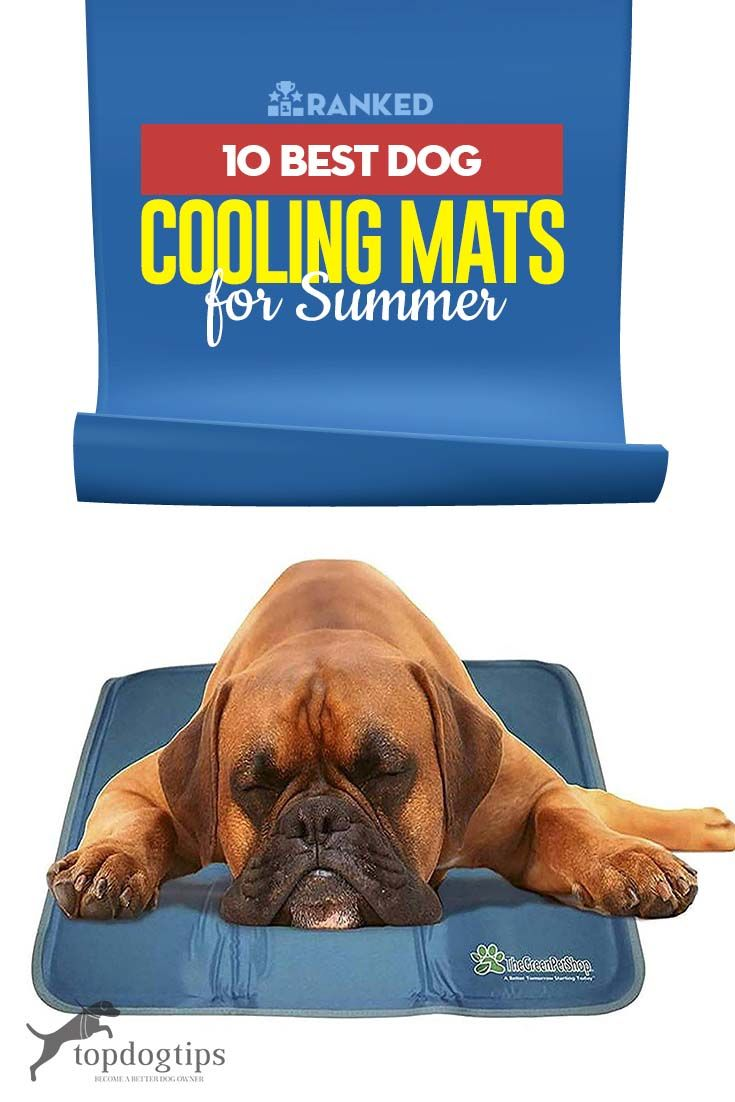 The 10 Best Doggy Cooling Mats for Summer Dog cooling