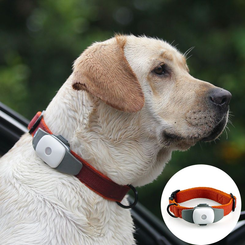 For Followit Waterproof Gps Tracker Tracking System Device Via App For Dog Pet Collar Uk Plug