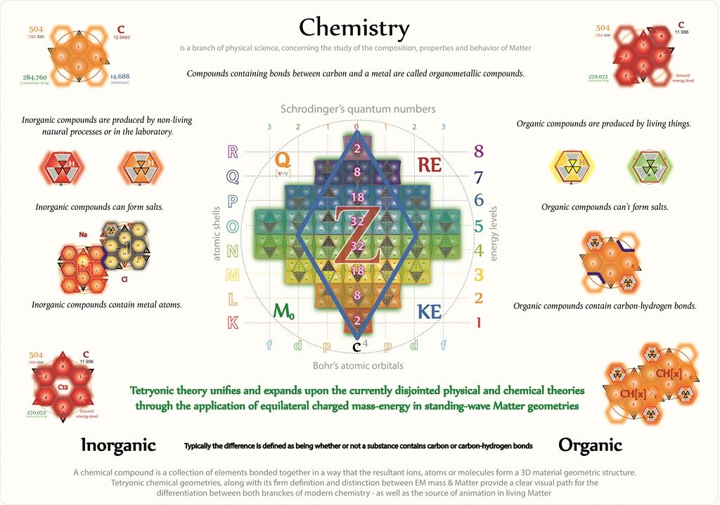Tetryonics 57.08 & Organic branches of