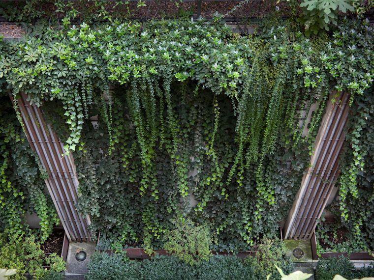 AG&P Architettura dei giardini e del paesaggio  Vertical garden  Pinterest  Paesaggio ...