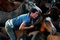 """Europe: The Rapa das Bestas or """"Shearing of the Beasts"""" in Galicia consists of gathering the wild horses in the mountains and shearing their manes before releasing them back into the wild until the next year. This is a old Celtic tradition that still exists in these proud Celtic lands"""