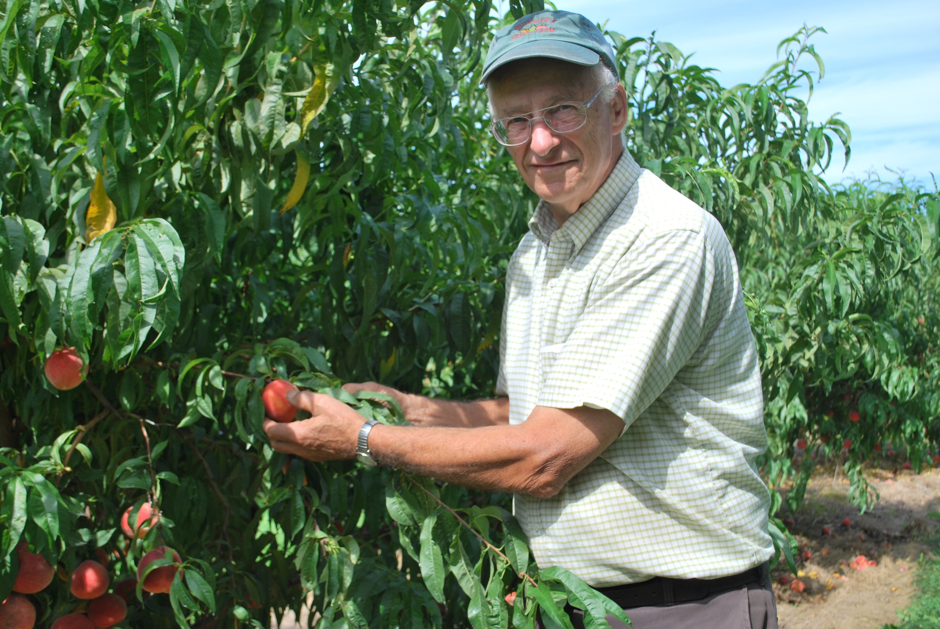 Tom Wickham Owns And Operates Wickham S Fruit Farm Located In Cutchogue A Rural Hamlet On Long Island New York This Family O Long Island Farmer Saving Money