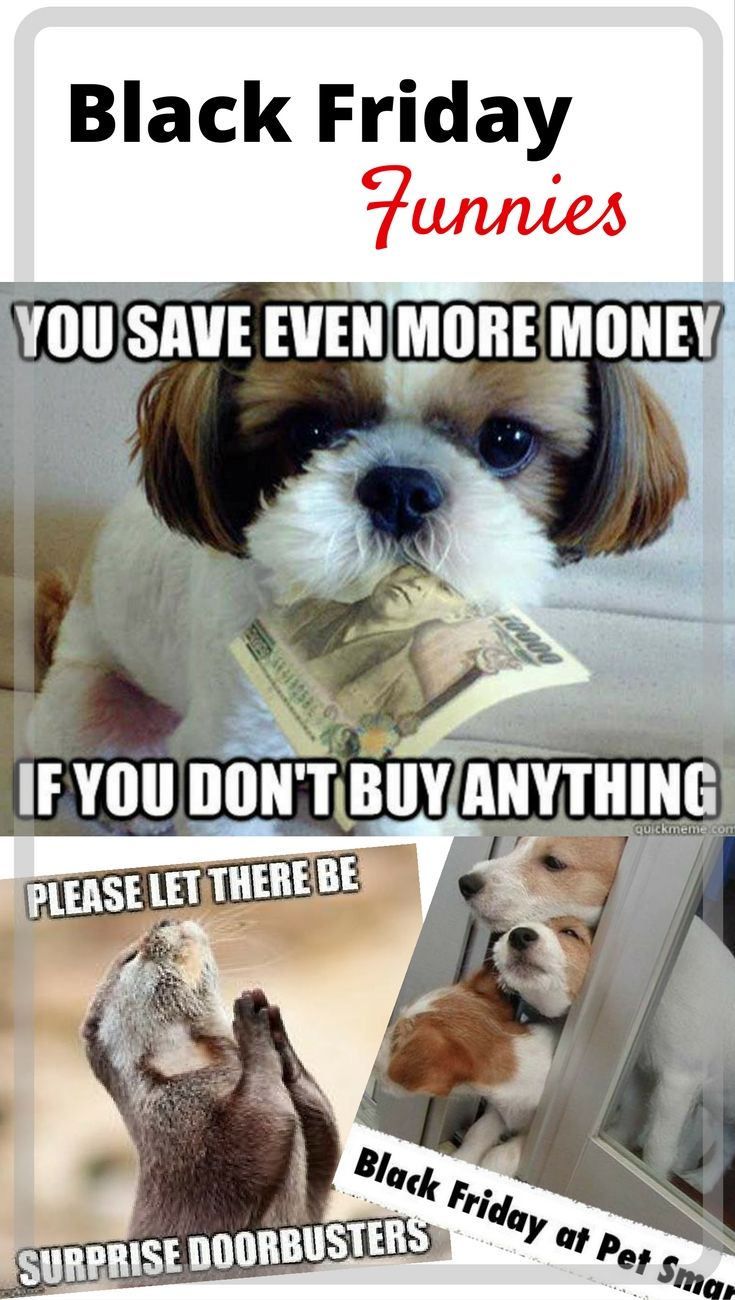 shopping! Enjoy these fun Black Friday memes